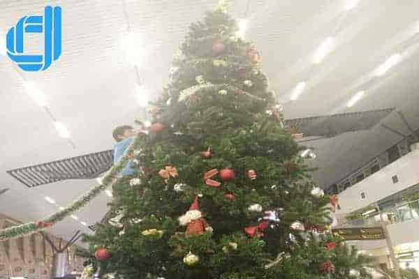 Cung Cấp Bán Cây Thông Noel Trang Trí Giáng Sinh Giá Rẻ Tại Đà Nẵng